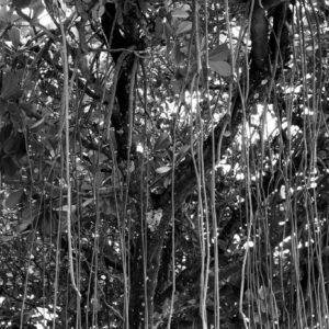 Ipanema Brasil Rio de Janeiro carioca black and white photography Veronique Thomazo Photograper Nice France