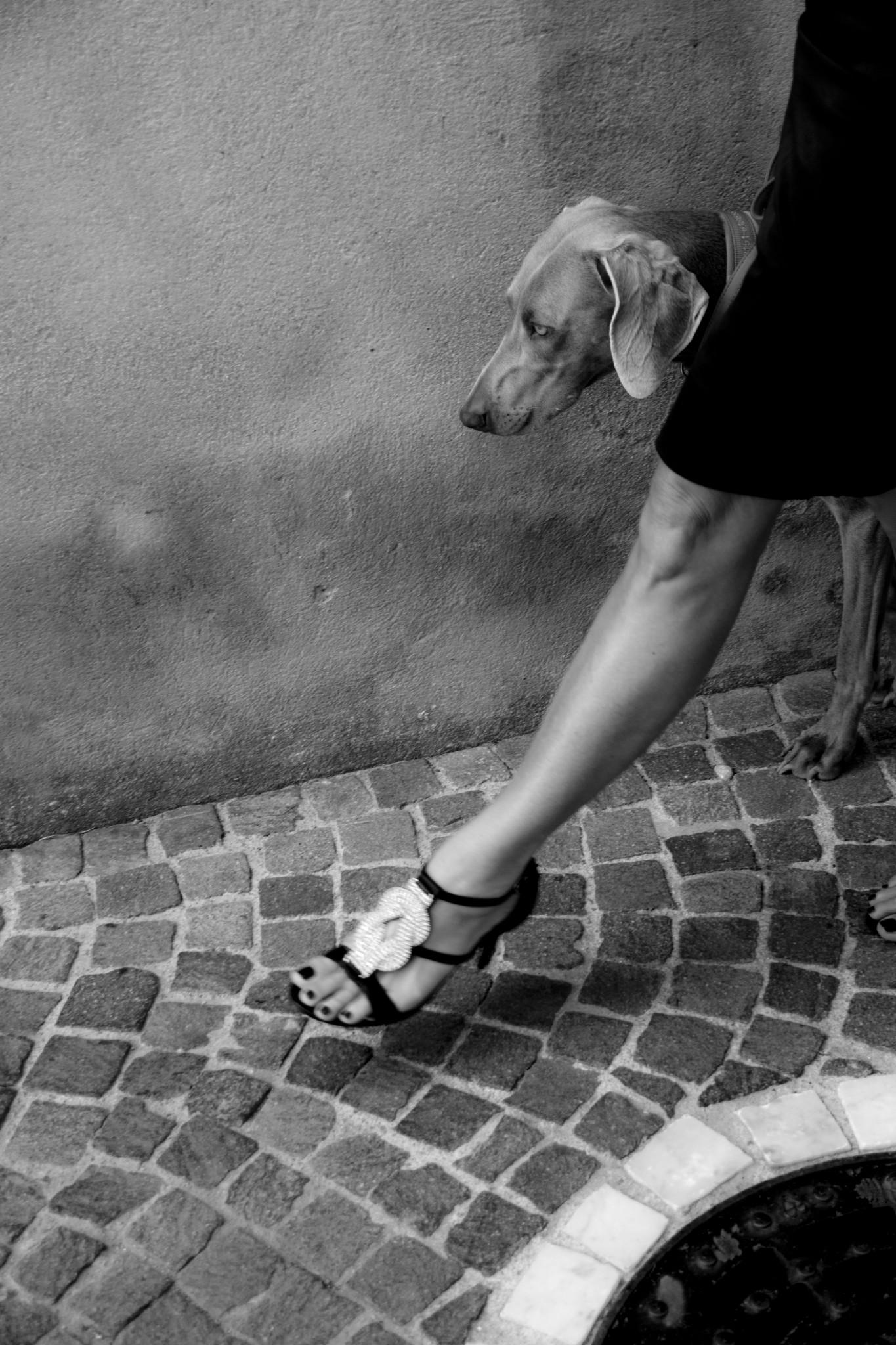 Veronique Thomazo Photographer